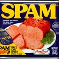 1 in 5 Internet shopper tempted by spam