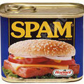 Court judgement could mean the end of spam mail