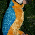 Hasbro launch Macaw Parrot FurReal Friends pet