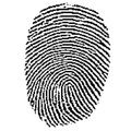 Police to carry fingerprint scanners