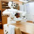 Toyota develops robot for household chores