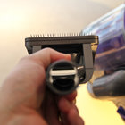 Dyson Groom promises to rid your dog of moulting hair - photo 11