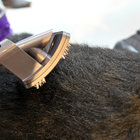 Dyson Groom promises to rid your dog of moulting hair - photo 4