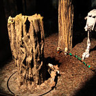 Lego Star Wars Miniland experience (Legoland Windsor) pictures and hands-on - photo 58