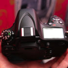 Nikon D600 pictures and hands-on - photo 6