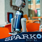 Blue Microphones Spark Digital pictures and eyes-on - photo 11