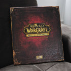World of Warcraft Mists of Pandaria collector's edition pictures and hands-on - photo 2