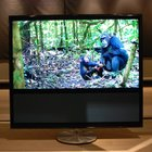 Bang & Olufsen BeoVision 11 television pictures and hands-on - photo 27