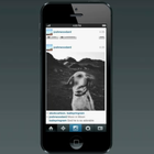 Facebook's Instagram unveils Vine-like video service with filters - photo 5
