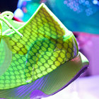 Under Armour Speedform pictures and eyes-on: The running shoe designed like a bra - photo 12