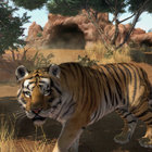 Zoo Tycoon Xbox One preview: If we could talk with the animals - photo 6