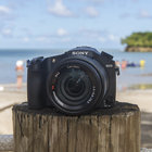 Sony Cyber-shot RX10: The first sample images - photo 1
