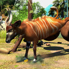 Zoo Tycoon review - photo 11