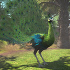 Zoo Tycoon review - photo 3