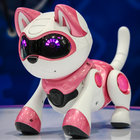 Teksta T-Rex, Kitty and Dalmation pictures and hands-on: The new robot pet range for 2014 (video) - photo 9