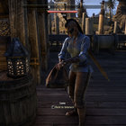 Elder Scrolls Online preview: First lengthy play of massively multiplayer Skyrim - photo 9