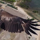 These amazing aerial views from drone photo contest won National Geographic prizes - photo 7