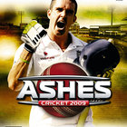Ashes Cricket 2009 - Xbox 360  review - photo 2