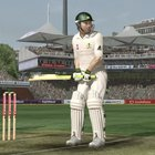Ashes Cricket 2009 - Xbox 360  review - photo 7