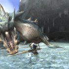 Monster Hunter Tri - Nintendo Wii   review - photo 3