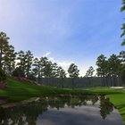 Tiger Woods PGA Tour 12: The Masters   - photo 4