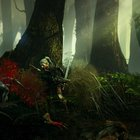 The Witcher 2: Assassins of Kings review - photo 8