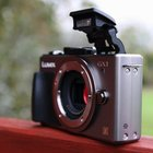 Panasonic Lumix GX1  - photo 6