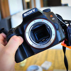 Sony Alpha A65 review - photo 13