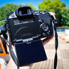 Sony Alpha A65 review - photo 18