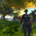 Kingdoms of Amalur: Reckoning review - photo 11