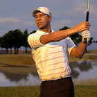 Tiger Woods PGA Tour 13  - photo 1