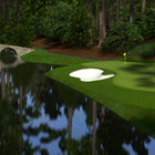 Tiger Woods PGA Tour 13  - photo 22