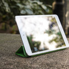 Apple iPad mini   review - photo 10