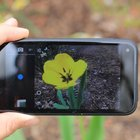 HTC First review - photo 4
