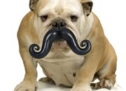 Five fantastic moustache-inspired gadgets - photo 5