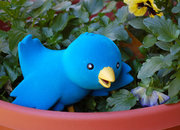 "Twitterrific launches ""Ollie"" bird-shaped collectible figurine - photo 5"