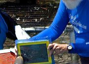 Even dolphins want an iPad - photo 2