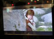 Display Taiwan goes bonkers over 3D TVs without the spex - photo 3