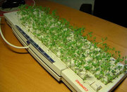 10 best office pranks for geeks  - photo 2