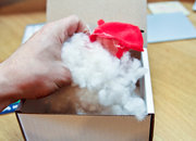 Dead Angry Bird delivered to Pocket-lint with note saying 'Don't F**k with the Fish' - photo 3