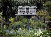 Birds tweet at Peckingham Palace - photo 4
