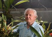 Sky and Sir David Attenborough bringing 3D to the plant world with new TV series - photo 3