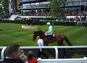 Nokia 808 PureView camera test at Royal Ascot - photo 5