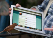 Bill Oddie translates bird tweets into, er, tweets - photo 3
