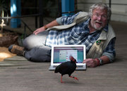 Bill Oddie translates bird tweets into, er, tweets - photo 4