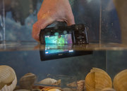 Nikon 1 AW1: Hands-on with the world's first waterproof compact system camera - photo 2