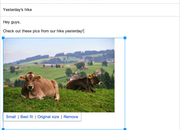 You can now insert Google+ photos into Gmail messages and re-size them inline - photo 2