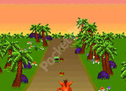 Crash Twinsanity 3D - Mobile game - photo 2