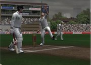 Cricket 2007 - PS2 - photo 5