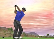 Tiger Woods PGA Tour 07 - Nintendo Wii - photo 4